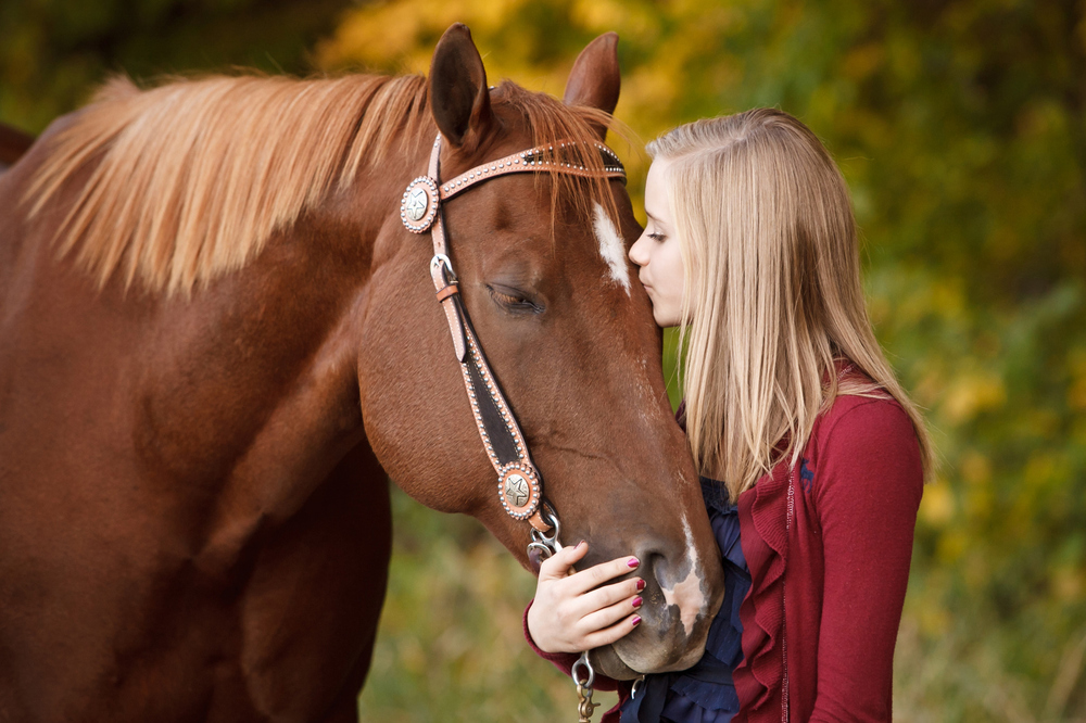 Equine Commercial Photographer
