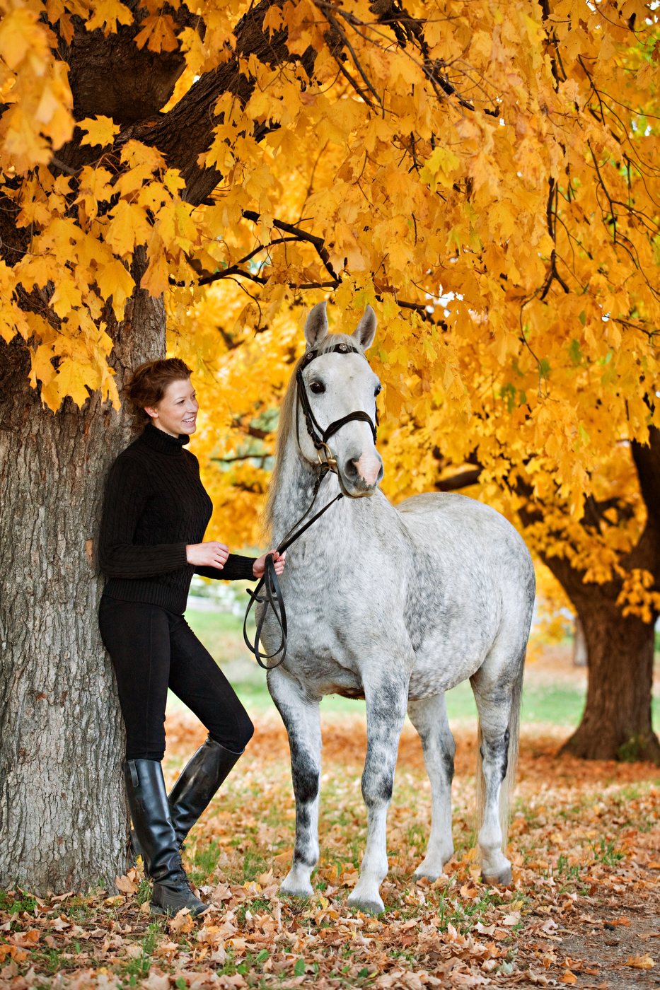Equine Lifestyle Photographer