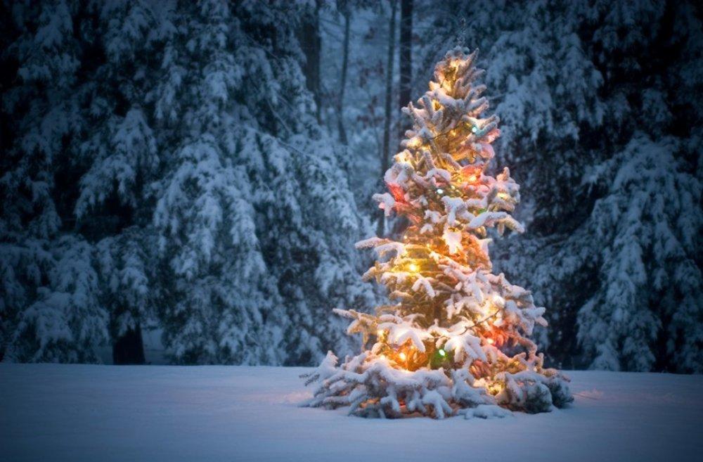 Christmas Eve Service  4 pm