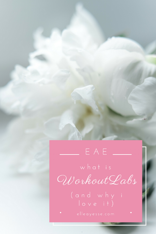 Do you have a personal trainer? Or maybe you would like one but are unable to find the time/money/etc? Enter WorkoutLabs. Your best routines, habits and trainers all on one site. Check out my post on how I use workoutlabs daily for a fit and happy life | workout | fitness | get in shape | personalized | personal trainer