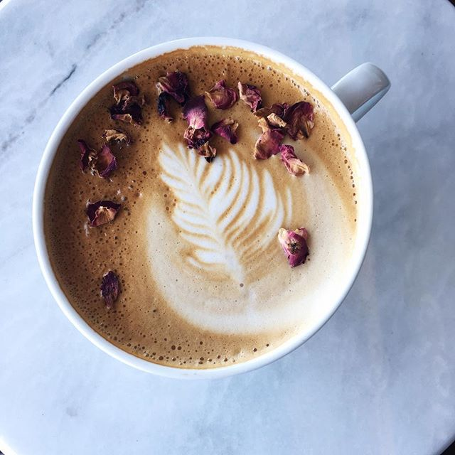 Oh yessss. Our new rose latte is a must try! Just a little flower power to kick start your day🌷☕️ #rose #latte #espresso #flowerpower #stumptown #stumptowncoffee