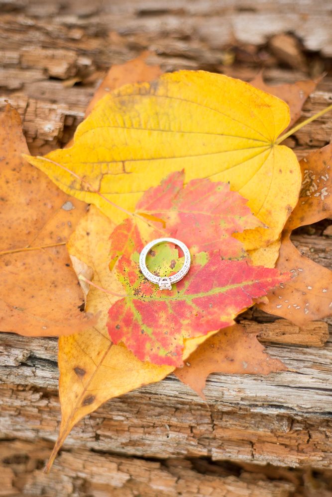 Engagement ring with fall leaves in the woods of Shenandoah