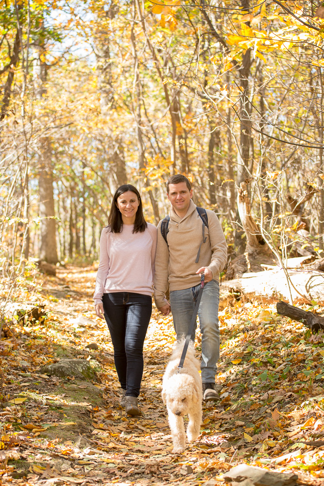Hiking with their dog on the Compton Peak trail in Shenandoah National Park