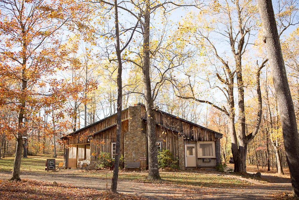 Lydia-Mountain-Lodge-Wedding-Photography-161.jpg