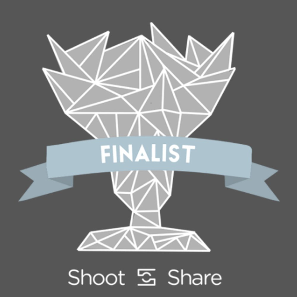 Shoot and Share Finalist Badge.jpg