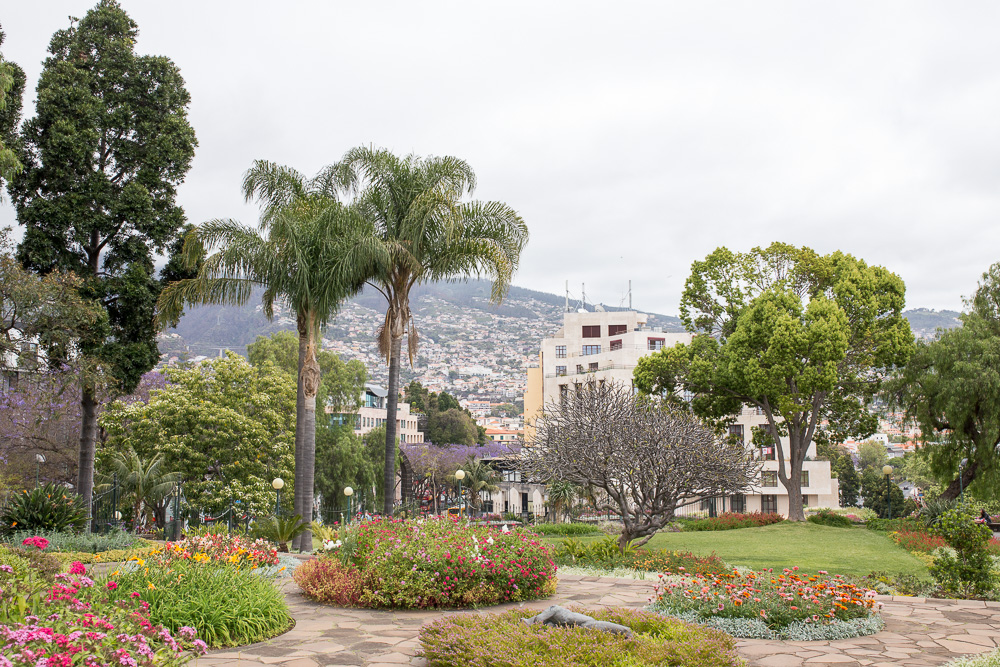 Santa Catarina Park in Funchal | Madeira Travel Blog | Megan Rei Photography