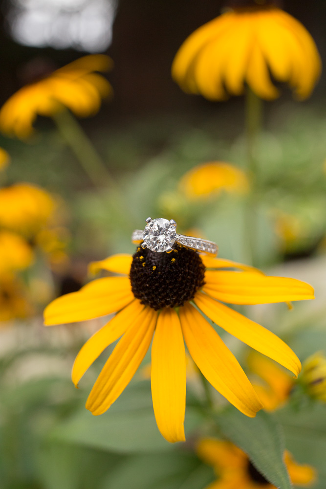 Engagement ring on a black-eyed susan | Megan Rei Photography