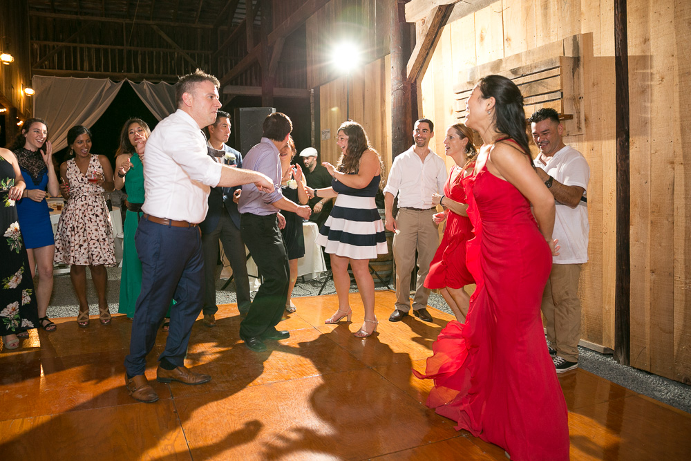 mountain-run-winery-culpeper-virginia-wedding-photography-206.jpg