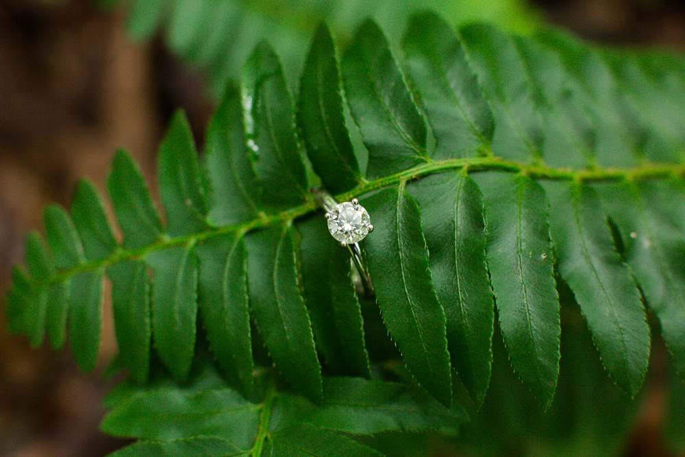 Solitaire engagement ring with fern | Nature lovers engagement photos Northern Virginia