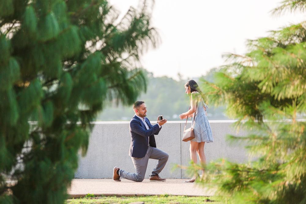 Surprise marriage proposal in Washington, DC