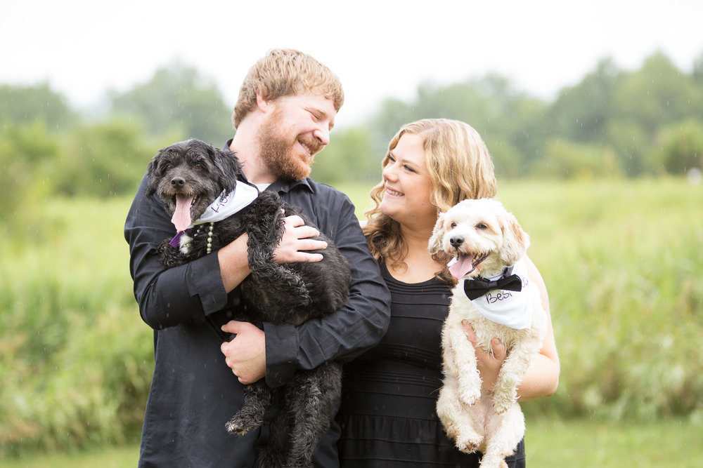 Family dog photography in Northern Virginia