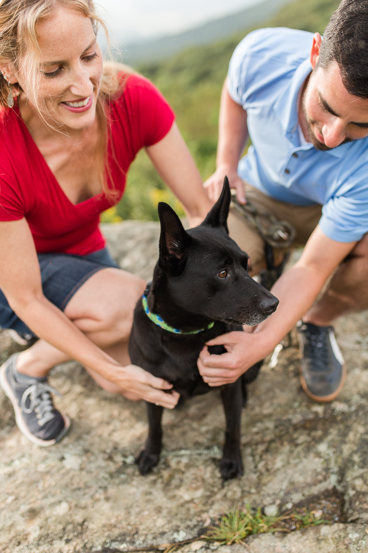 Dog photos at Shenandoah National Park