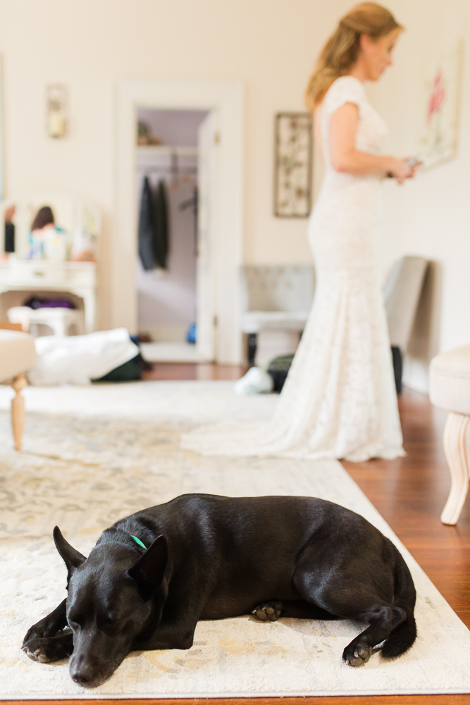 Dog sleeping on the bridal suite rug while bride gets ready at Rust Manor House