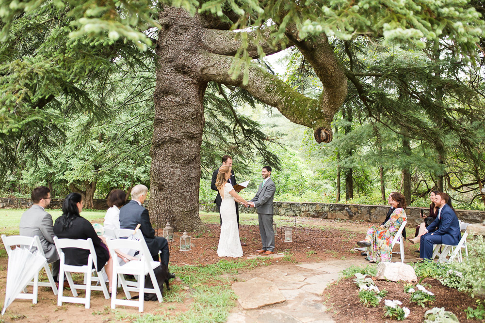 Eco-friendly green wedding under the tree at Rust Manor House in Leesburg, Virginia