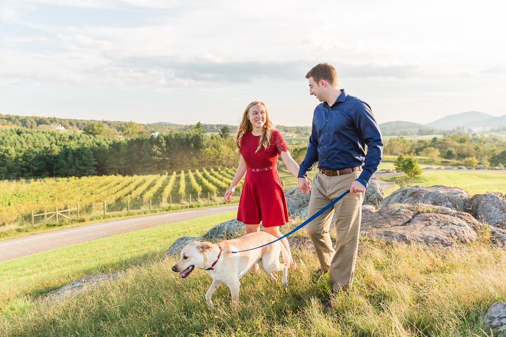 Dog-walking engagement pictures overlooking the vineyard at Blue Valley Winery, Delaplane Virginia