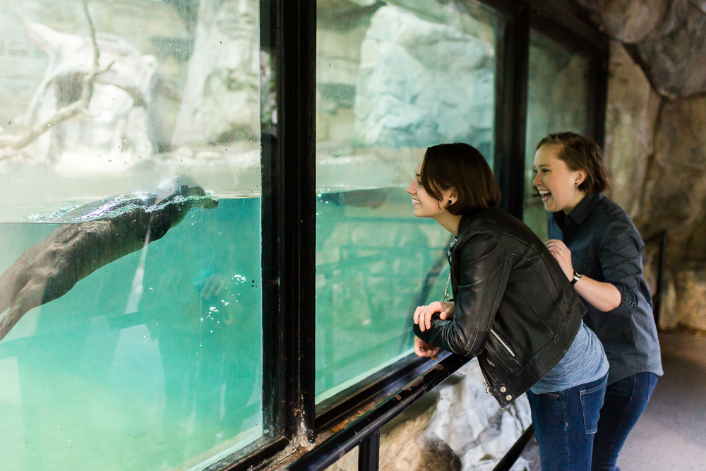 Otter swims up to the glass to be a part of this fun engagement session at the National Zoo in Washington, DC | Same-sex engagement pictures in DC