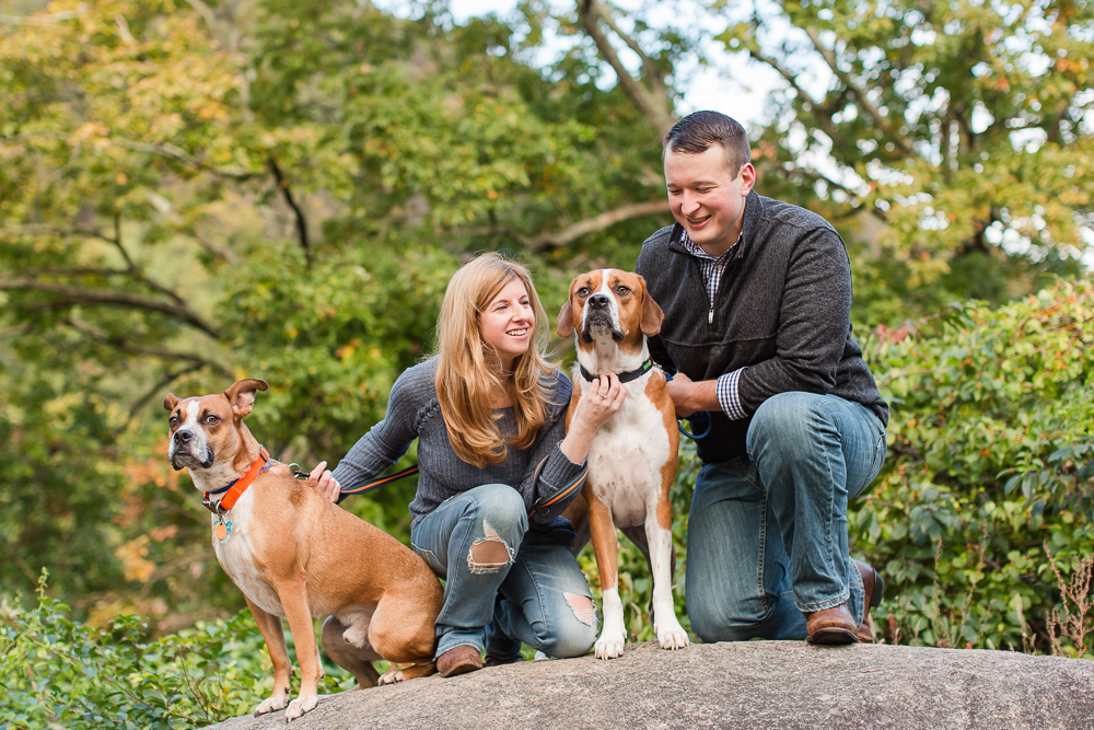 Bear Mountain State Park engagement pictures with rescue dogs | Hudson Valley engagement photography