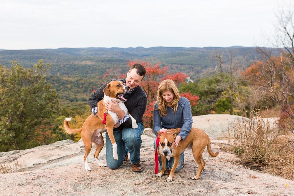 Candid pictures of rescue dogs during a hiking engagement at Bear Mountain State Park
