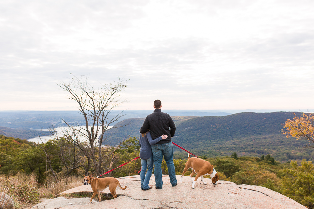 Engagement picture with dogs overlooking the Hudson River from the top of Bear Mountain | Best Hudson Valley engagement photo locations