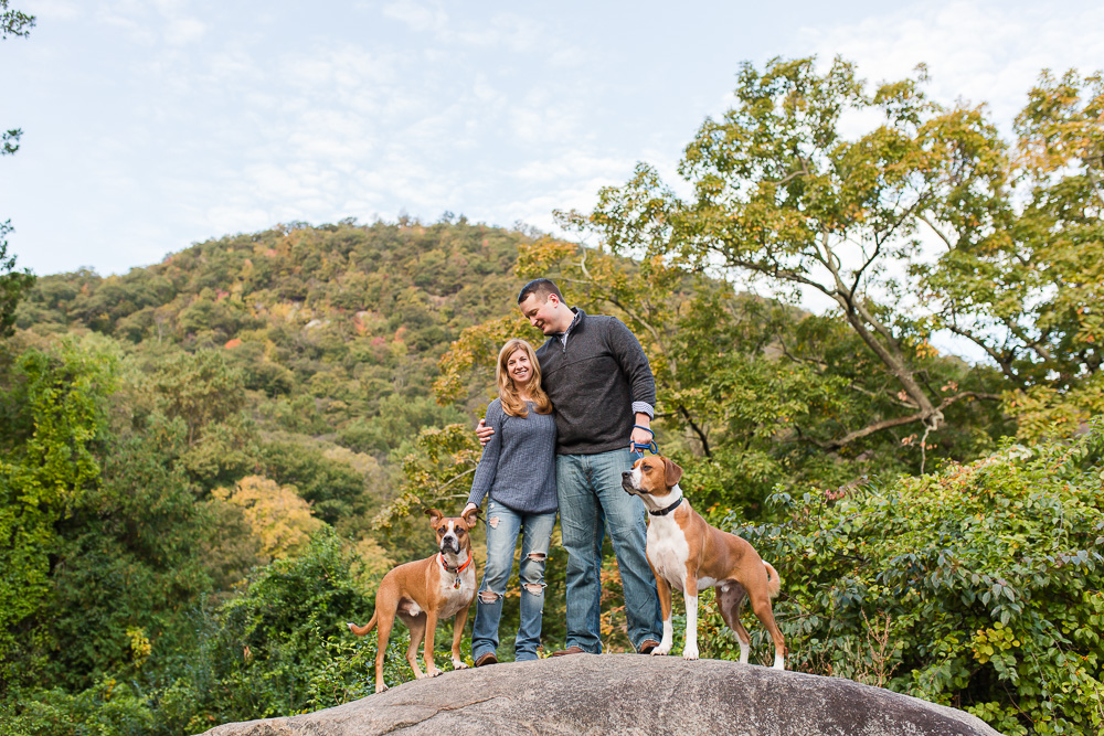 Engaged couple with their dogs standing on a rock at Bear Mountain State Park | Best Hudson Valley engagement photo locations