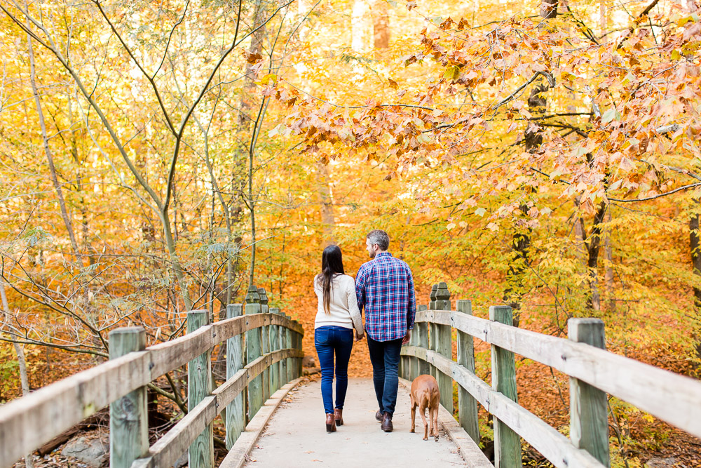 Engagement photo surrounded by fall leaves at Rock Creek Park in Washington, DC