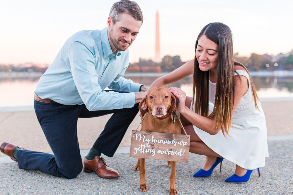 Engaged couple with their dog by the Tidal Basin in Washington, DC | DC Engagement Photographer