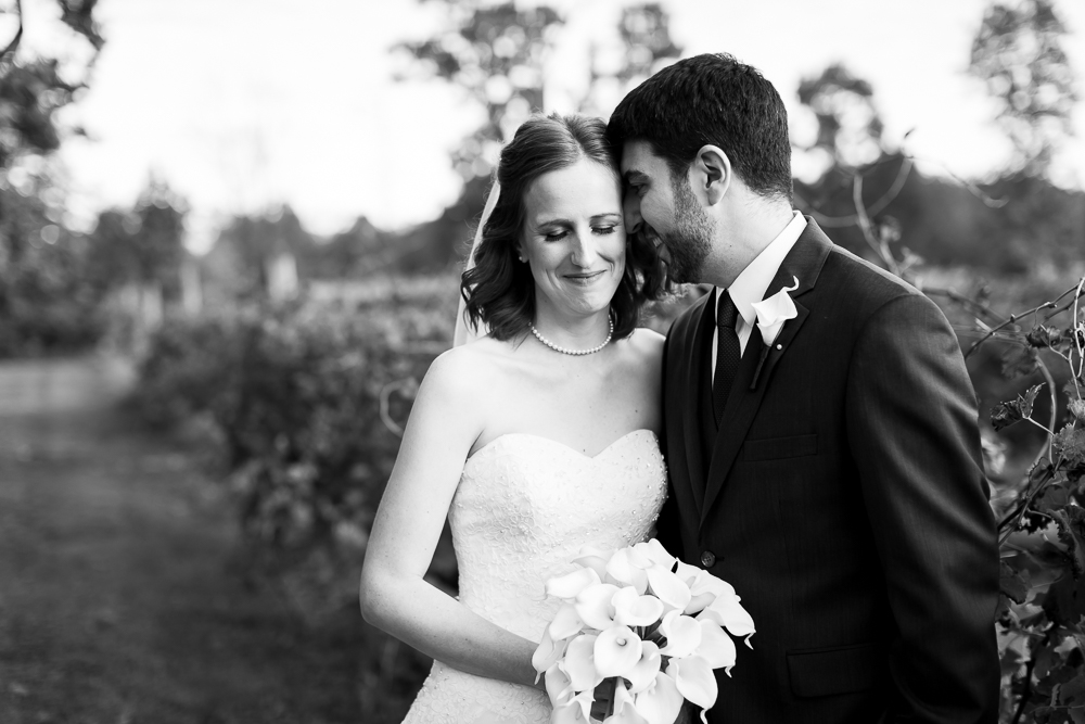 Bride and groom cuddling near the vines at their Lost Creek Winery wedding