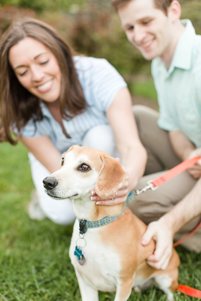 Engaged couple with their rescue dog, a beagle-dachshund-mix in Warrenton, VA