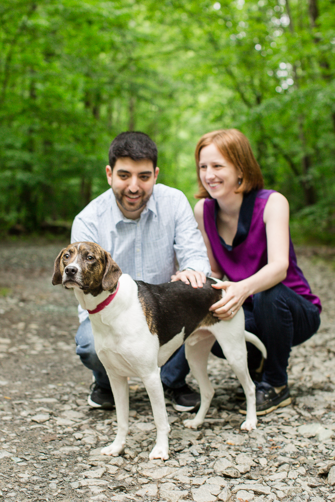 Hiking with their rescue dog during an engagement session in Northern Virginia