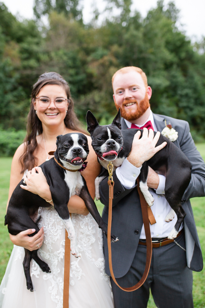 Wedding couple holding their dogs