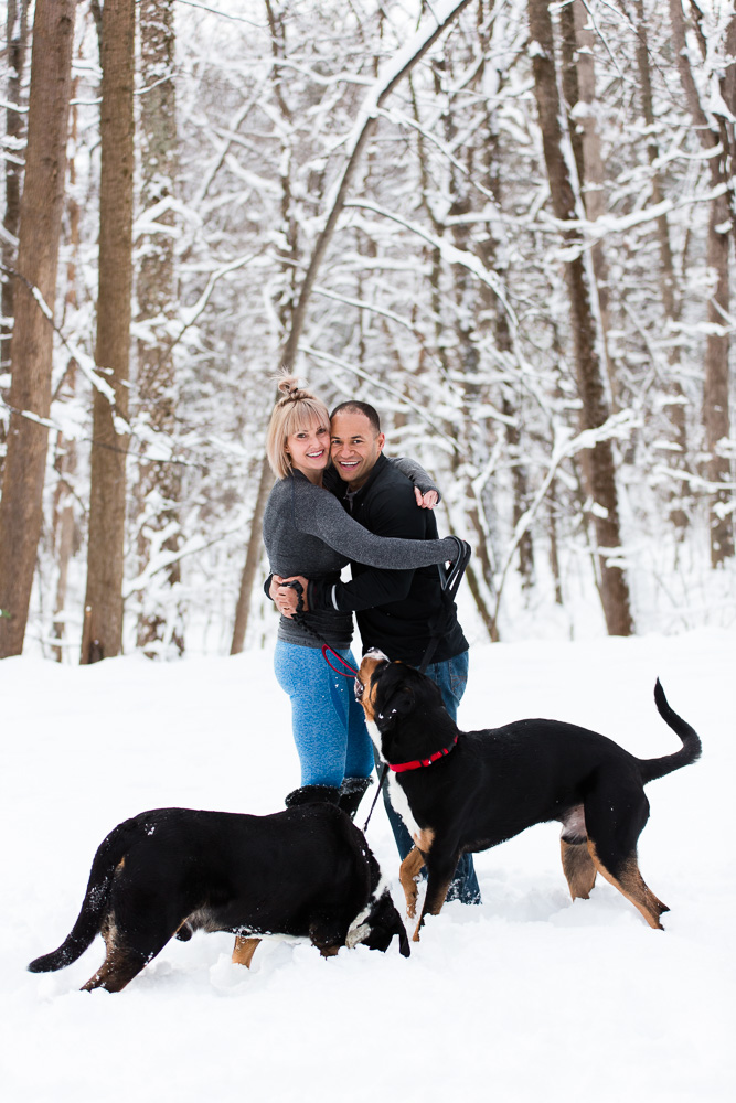 Engaged couple hugging as their dogs look on while playing in the snow