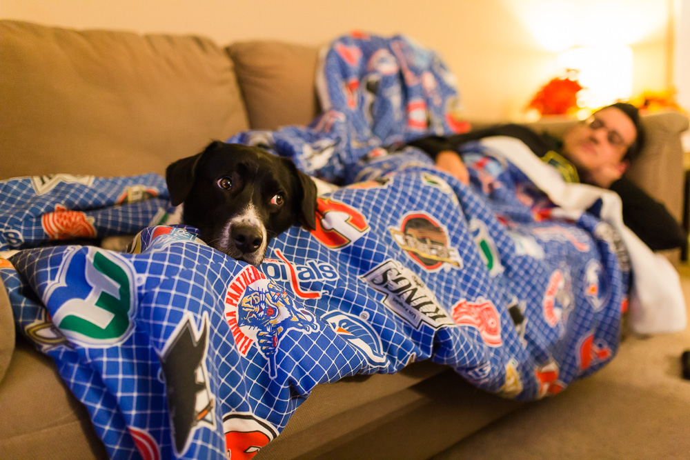 Dog and dog dad cuddling on the couch | DC lifestyle dog photographer