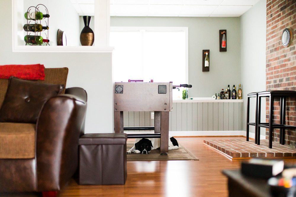 Dog taking a nap under the foosball table | In-home dog photographer in Northern Virginia