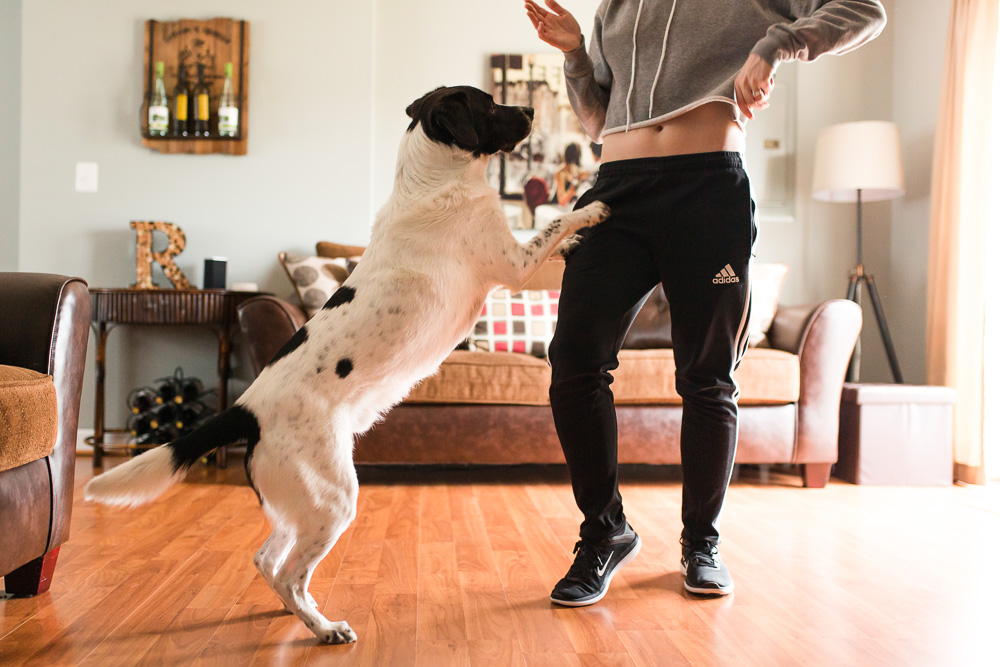 Black and white dog jumping up to dance with his mom