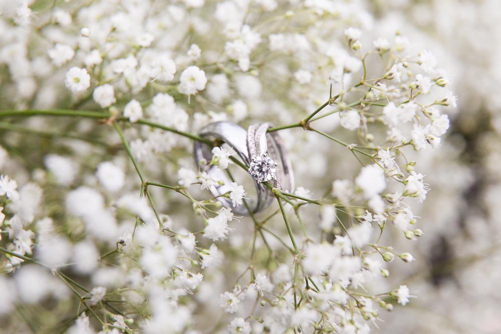 Wedding rings in baby's breath during a spring wedding at Black Horse Inn, Virginia