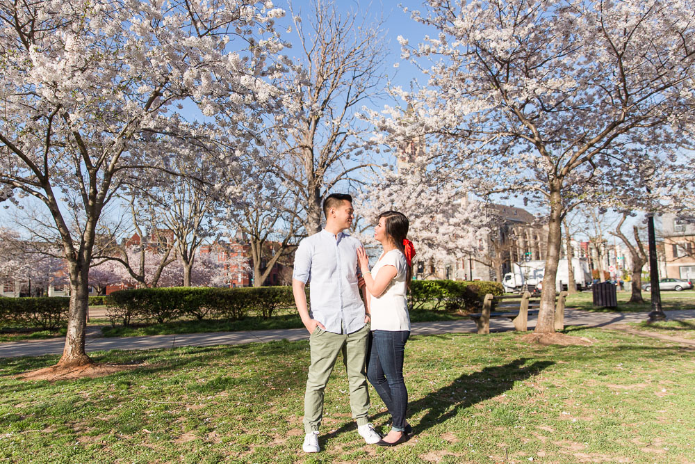 Spring engagement photos with cherry blossom trees in Washington, DC