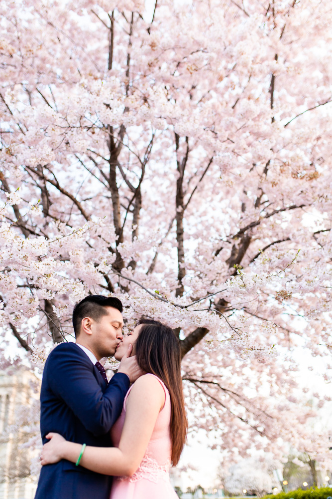 Best cherry blossom engagement photography in Washington, DC