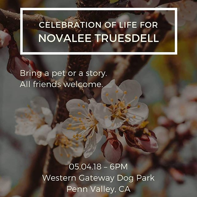 It is with a heavy heart that I announce that our beautiful Novalee Truesdell passed away last Thursday. You are invited to join us as we celebrate the life of our amazing and compassionate founder, Novalee Truesdelll. All are welcome to attend this pet-friendly farewell at Western Gateway Dog Park, this Friday at 6pm. See you there! 💞🐕🐾