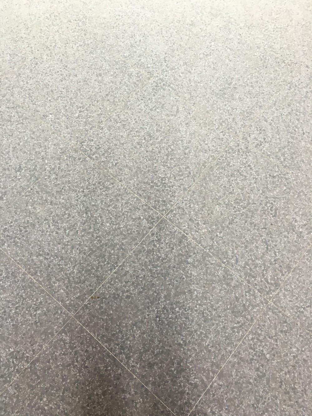 Terrazzo floors before polishing.