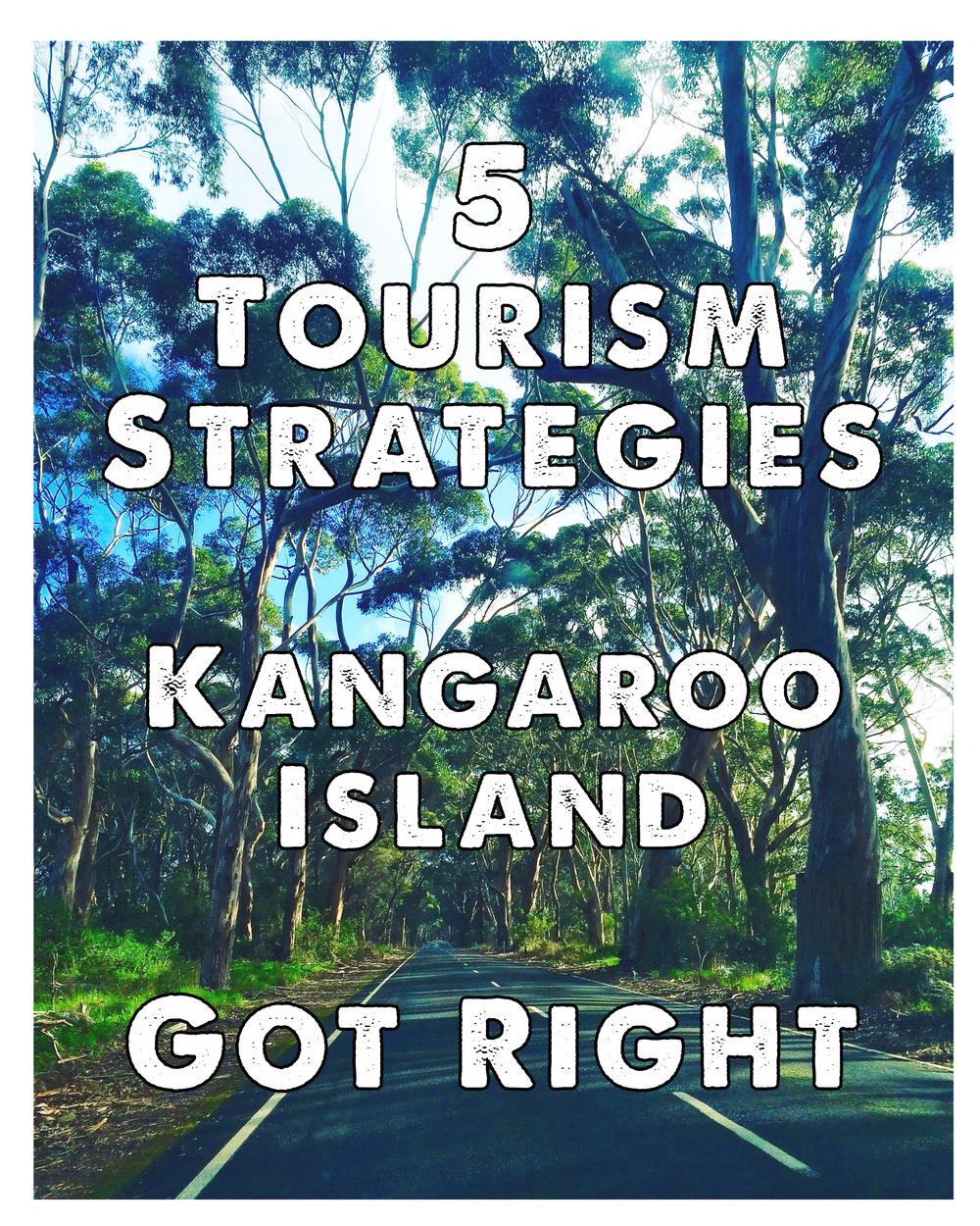 5TOURISMSTRATEGIESKANGAROOISLANDGOTRIGHT