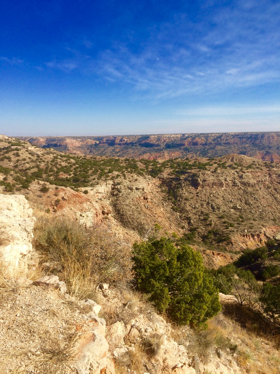 The breathtaking Palo Duro Canyon near Amarillo, TX.