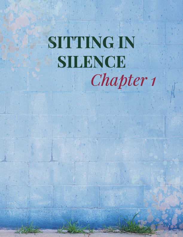 CHAPTER 1   How to sit in silence   Chapter 1 introduces the idea of getting comfortable with yourself through one of the most basic and yet profound exercises.