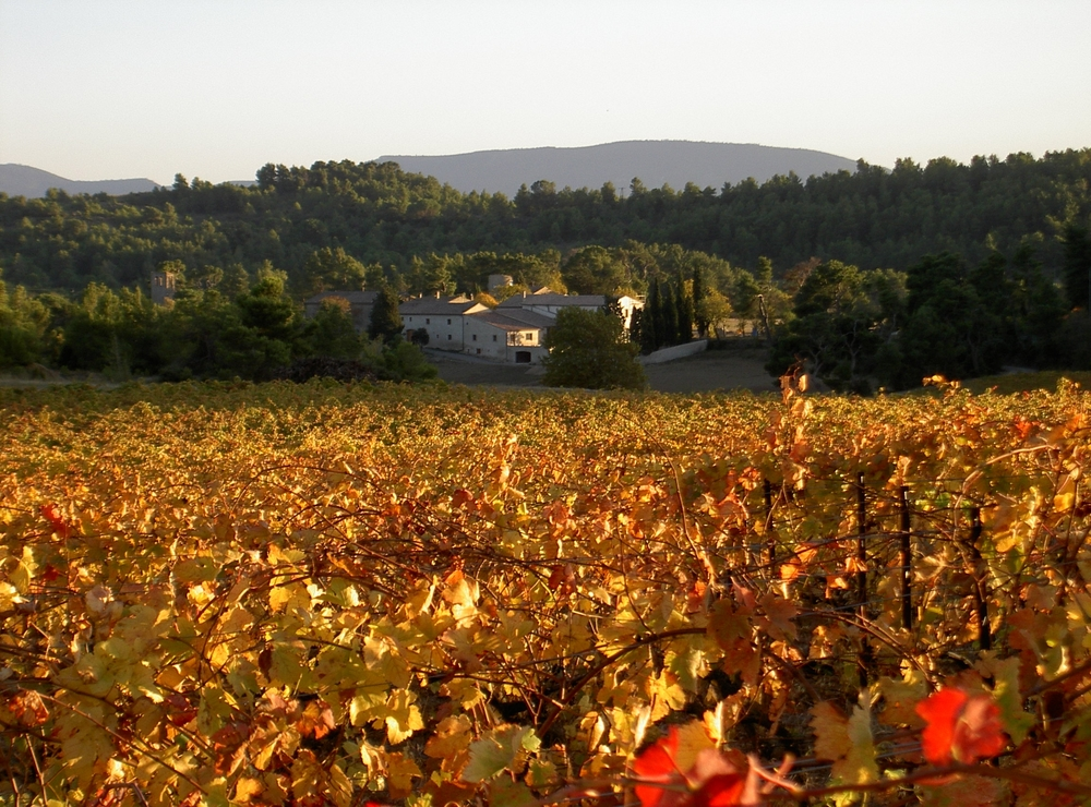 stjacques automne.JPG