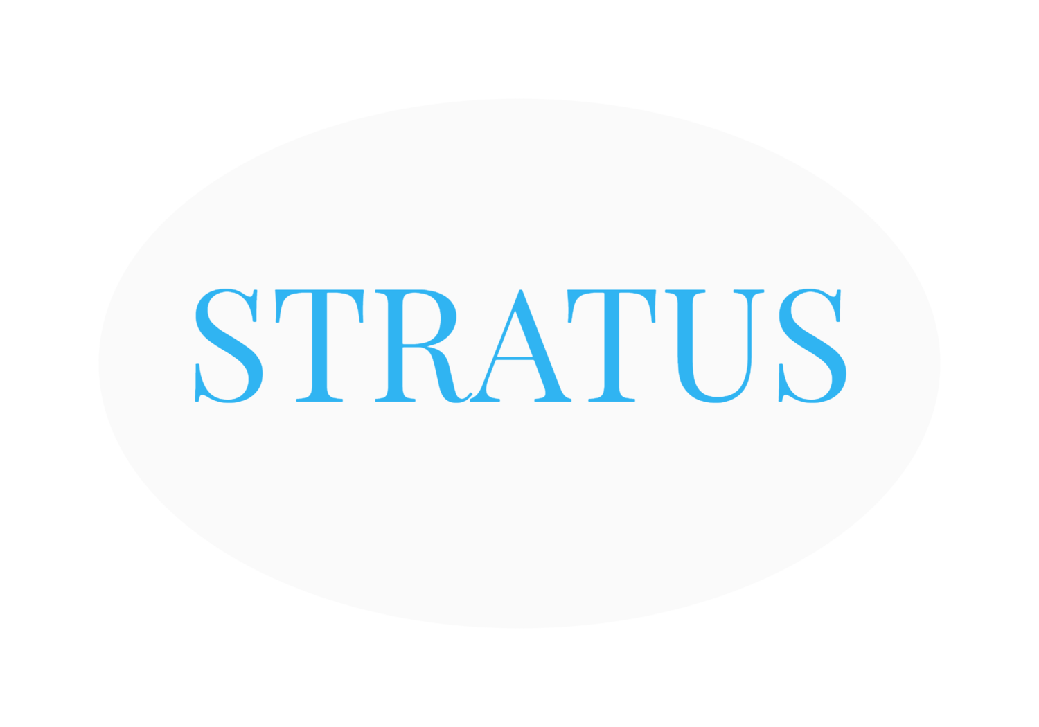 Stratus Capital Management