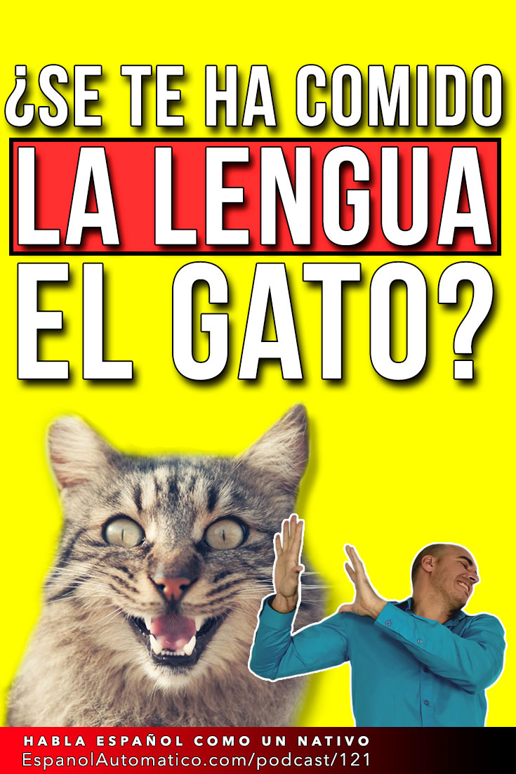 Se te ha comido la lengua el gato I español coloquial I español de la calle   [Podcast 121] Learn Spanish in fun and easy way with our award-winning podcast: http://espanolautomatico.com/podcast/121 REPIN for later #teachspanish #spanishteacher #speakspanish #spanishlessons #learnspanishforadults #learnspanishforadultsfree #learningspanish #learningspanishlanguage #vocabularyactivities