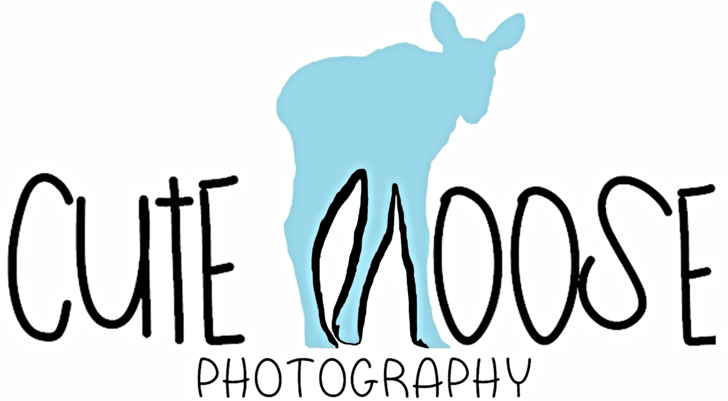 Cute Moose Photography