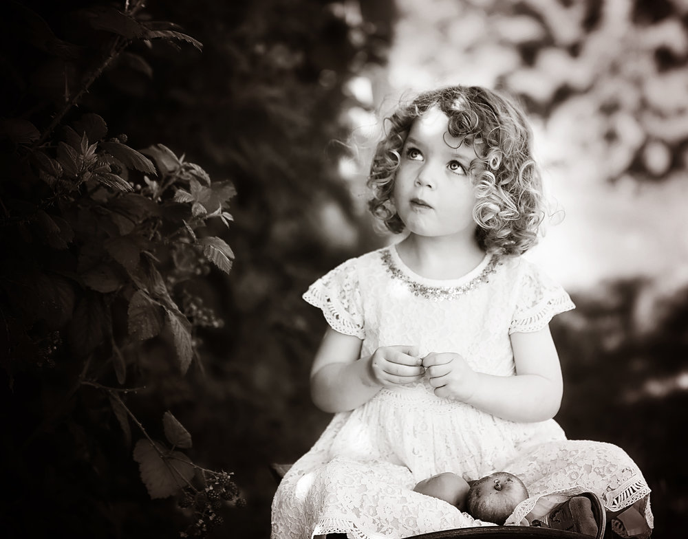 Blackberry Picking  Isn't she adorable?? Loved this shoot! And seems a lot of people like this one too. It's ranked in the top 10% of images of 2016 by Viewbug.