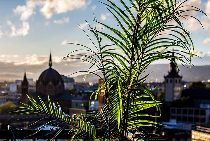 På takterrassen kan gjestene nyte den spektakulære utsikten over hele Oslo.
