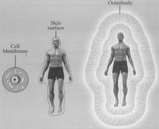 Evolution of the membrane principle translates into the skin and the outerbody. The same functions are repeated in a more sophisticated way at each stage. The outerbody membranes can be regulated with consciousness.