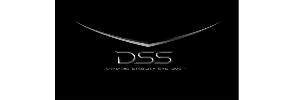DSS 1550 px.jpg